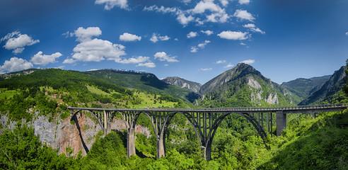 Staande foto Canyon Panorama of the Durdevica Tara Bridge on Tara River