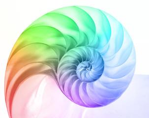 Printed kitchen splashbacks Spiral Nautilus in Regenbogenfarben