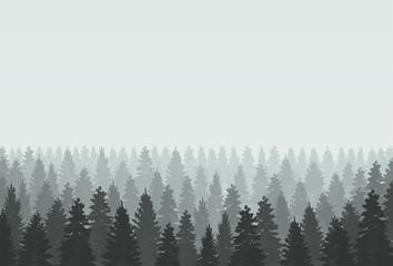 Coniferous forest silhouette template. Vector illustration.