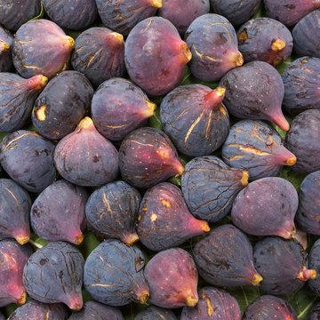 Fresh ripe purple (Black Mission) figs closeup background