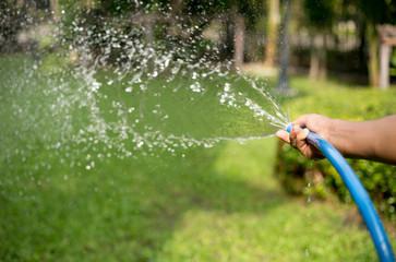 Gardener watering the garden