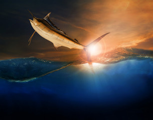 sailfish flying over blue sea ocean use for marine life and beau