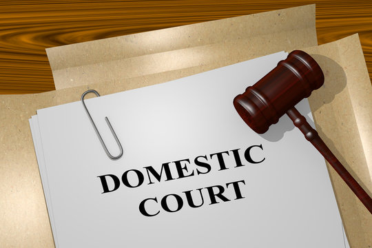 Domestic Court legal concept