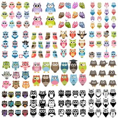 Big set of owls