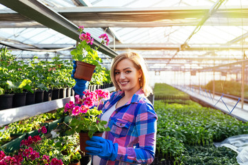 Attractive young woman working in greenhouse and enjoying in beautiful flowers