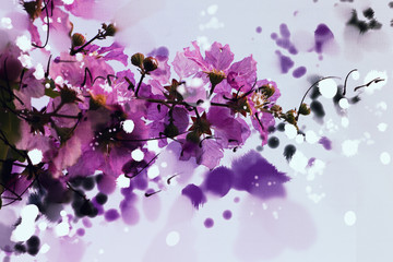 digital painting purple flowers watercolor style , Lagerstroemia