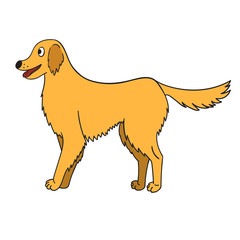 Cute cartoon golden retriever isolated on white background
