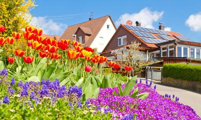 Wall Mural - Frühling im Dorf