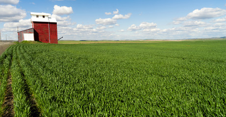 Red Grain Elevator Blue Skies Agriculture Green Crops Field