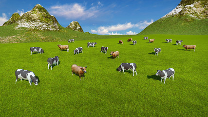 Wall Mural - Aerial view of a herd of dairy cows grazing on a green alpine pasture at sunny day. Mountains on the background. Realistic 3D illustration.