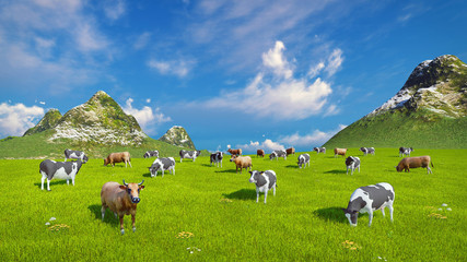 Wall Mural - Farm landscape with a herd of mottled dairy cows grazing on a verdant alpine pasture at sunny day. High angle view. Realistic 3D illustration.