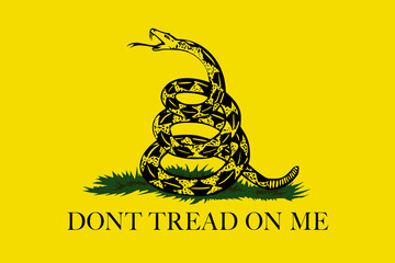Gadsden Don't Tread On Me Flag, Authentic version