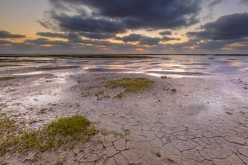 Wall Mural - Tidal marsh mud flat