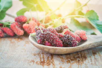Mulberry fruit on wooden spoon. Selective focus,