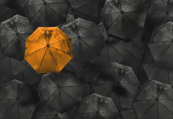 orange umbrella on black different business concept