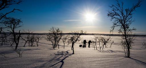 Arctic track