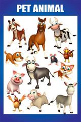 pet animal chart