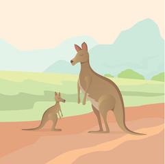 Cartoon kangaroo vector illustration