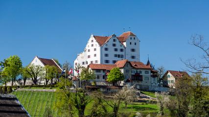 Castle Wildegg in the canton of Aargau