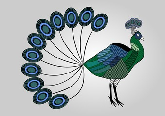 Isolated colorful peacock illustration with hatched patterned body parts, decorative bird, anti-stress coloring
