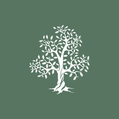 Beautiful white oak tree silhouette on green background. Modern vector sign. 