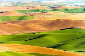 Palouse Region Steptoe Butte Farmland Rolling Hills Agriculture