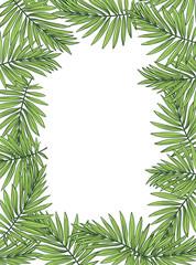 Aloha Hawaii illustration, palm leaves on the white background