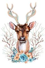 Deer - Front View