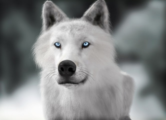 White wild wolf with blue eyes with blurred depth of field winter background. Photo realistic 3d rendering