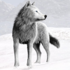 Illustration of a White wild wolf with blue eyes and winter background. Photo realistic 3d rendering