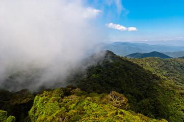 Горный пейзаж в Камерон Хайлендс / Cameron Highlands