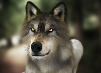 Brown wild wolf with yellow eyes with blurred depth of field nature background. Photo realistic 3d rendering