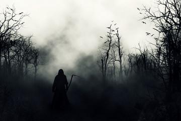 graveyard silhouette halloween abstract background. Fotoväggar
