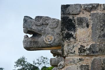 Head of Sacred Snake