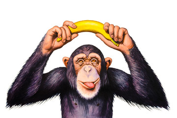 Chimpanzee holding banana hands over his head. Watercolor illustration.