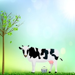 White and Black Spotted Cow with a Bucket Milk vector illustration