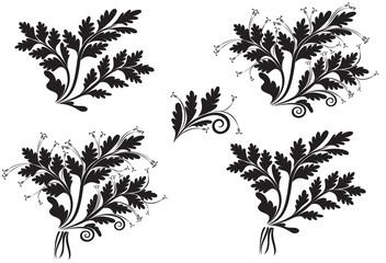 Set of flower spikelets
