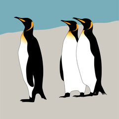 Vector silhouettes of penguins.