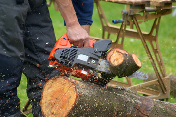 trunk on the green grass that is cut by woodcutter with saw with