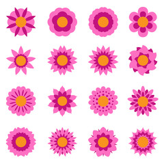 Set of vector flowers isolated. Flower icon. Floral symbol. Vector illustration.