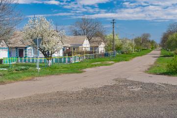 Spring landscape with street in Kalynivka village, Dnepropetrovskaya oblast,  Ukraine