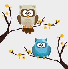 Owl character design