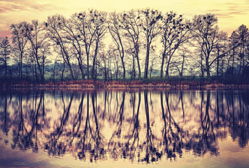 Vintage toned tree silhouettes reflected in a lake.