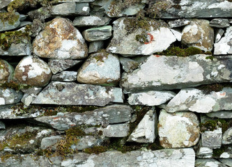 Dry stone wall and moss