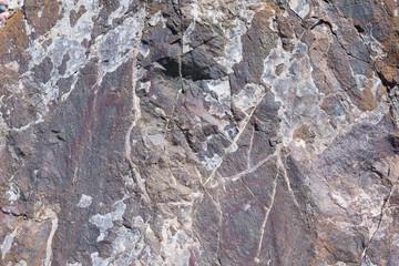 Stone texture. Stone white patterns