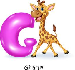 Illustration of G letter for Giraffe