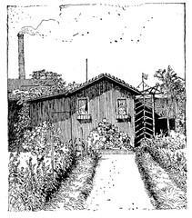 Vintage illustration, wooden cabin with vegetable garden