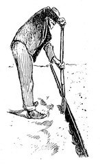 Agriculture vintage illustration, farmer working with a spade to a ditch