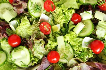 Frischer Salat mit Tomaten, Gurkenscheiben, Schnittlauch und Lauch, lecker und gesund