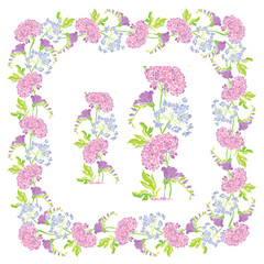 Set of ornaments - decorative hand drawn floral border and frame